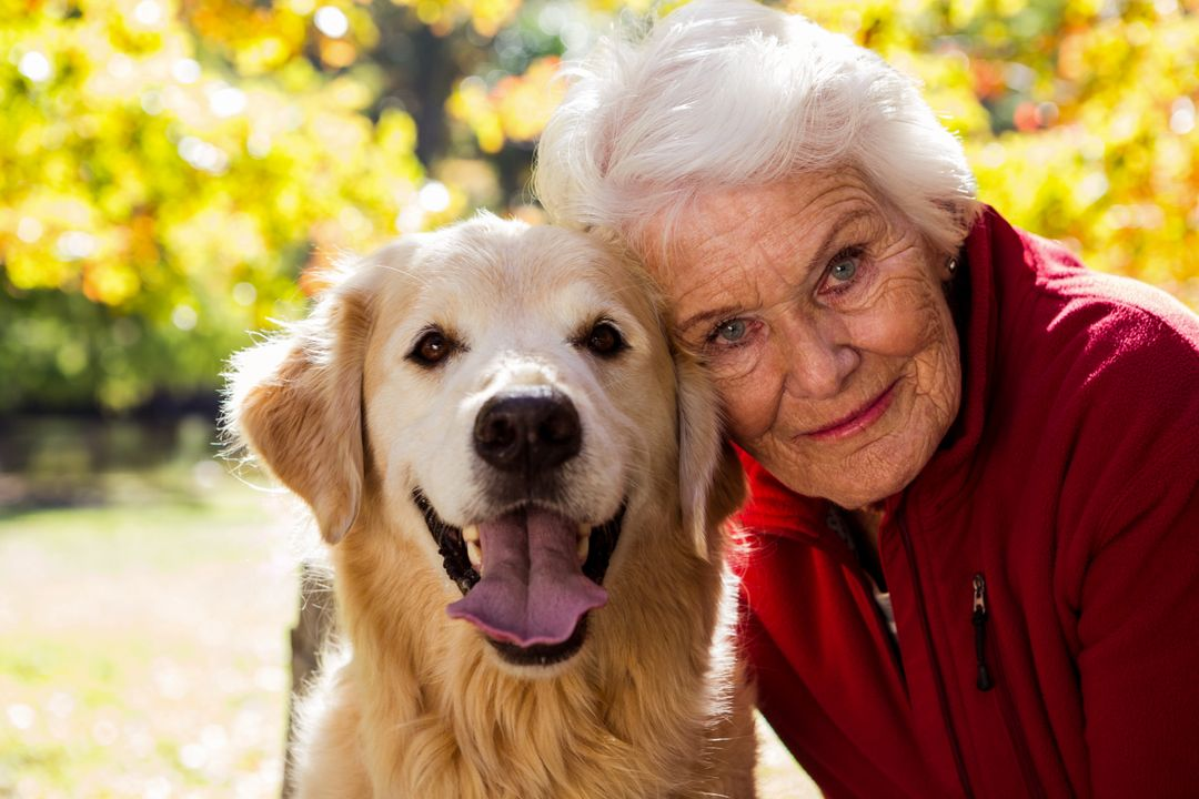 Portrait of elderly woman sitting with dog in the park  Free Stock Images from PikWizard