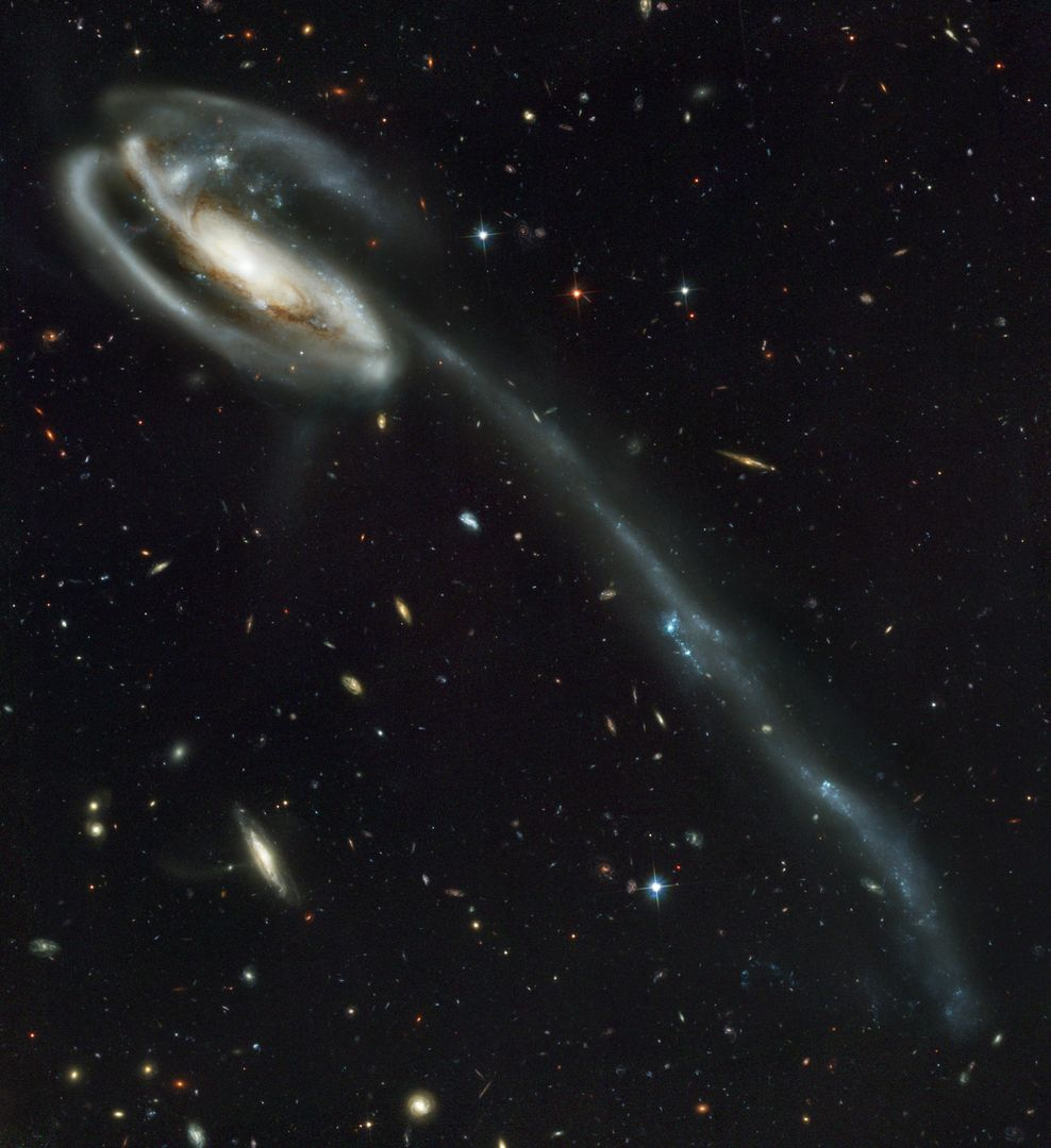 "This picture of the galaxy UGC 10214 was was taken by the Advanced Camera for Surveys (ACS), which was installed aboard the Hubble Space Telescope (HST) in March 2002 during HST Servicing Mission 3B (STS-109 mission). Dubbed the ""Tadpole,"" this spiral galaxy is unlike the textbook images of stately galaxies. Its distorted shape was caused by a small interloper, a very blue, compact galaxy visible in the upper left corner of the more massive Tadpole. The Tadpole resides about 420 million light-years away in the constellation Draco. Seen shining through the Tadpole's disk, the tiny intruder is likely a hit-and-run galaxy that is now leaving the scene of the accident. Strong gravitational forces from the interaction created the long tail of debris, consisting of stars and gas that stretch our more than 280,000 light-years. The galactic carnage and torrent of star birth are playing out against a spectacular backdrop: a ""wallpaper pattern"" of 6,000 galaxies. These galaxies represent twice the number of those discovered in the legendary Hubble Deep Field, the orbiting observatory's ""deepest"" view of the heavens, taken in 1995 by the Wide Field and planetary camera 2. The ACS picture, however, was taken in one-twelfth of the time it took to observe the original HST Deep Field. In blue light, ACS sees even fainter objects than were seen in the ""deep field."" The galaxies in the ACS picture, like those in the deep field, stretch back to nearly the begirning of time. Credit: NASA, H. Ford (JHU), G. Illingworth (USCS/LO), M. Clampin (STScI), G. Hartig (STScI), the ACS Science Team, and ESA."