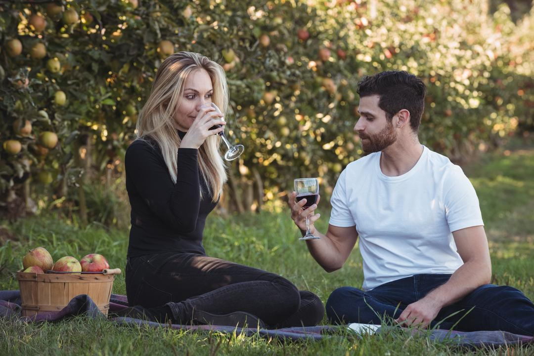 Couple having wine in apple orchard on a sunny day Free Stock Images from PikWizard