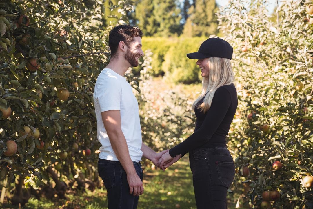 Couple holding hands and standing in apple orchard on a sunny day Free Stock Images from PikWizard