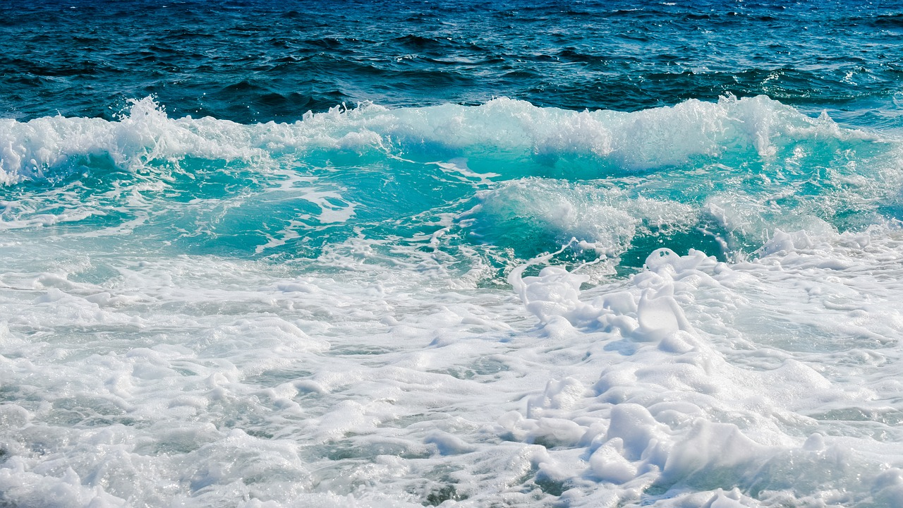 FREE ocean Stock Photos from PikWizard