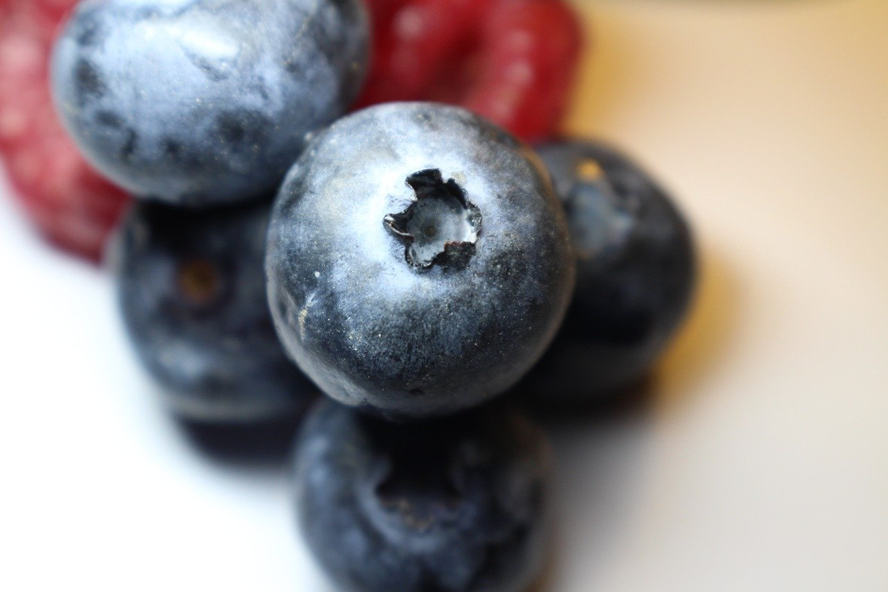 FREE blueberry Stock Photos from PikWizard