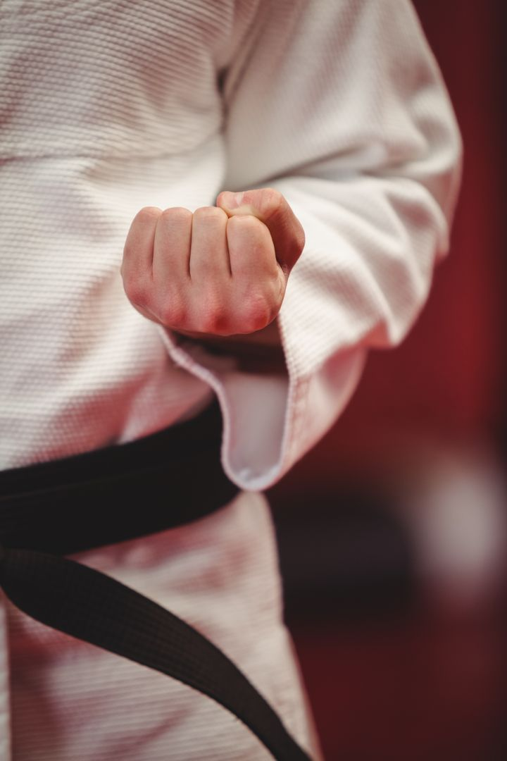 Mid-section of karate player performing karate stance in fitness studio Free Stock Images from PikWizard