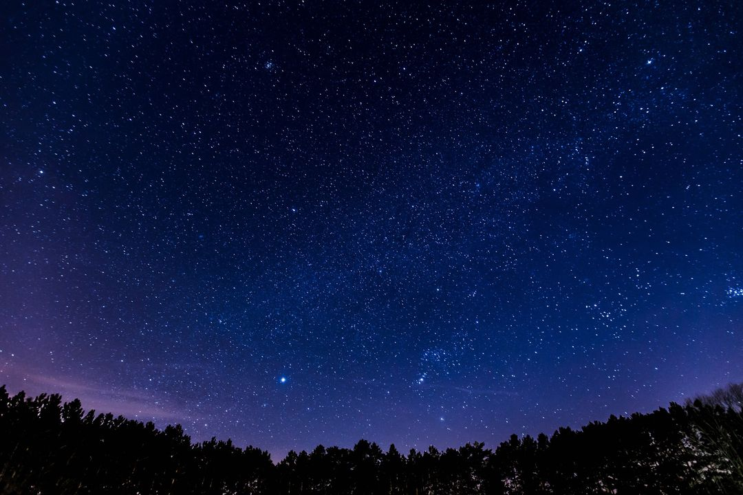 Image of Stars at Night with a Forest in the Background
