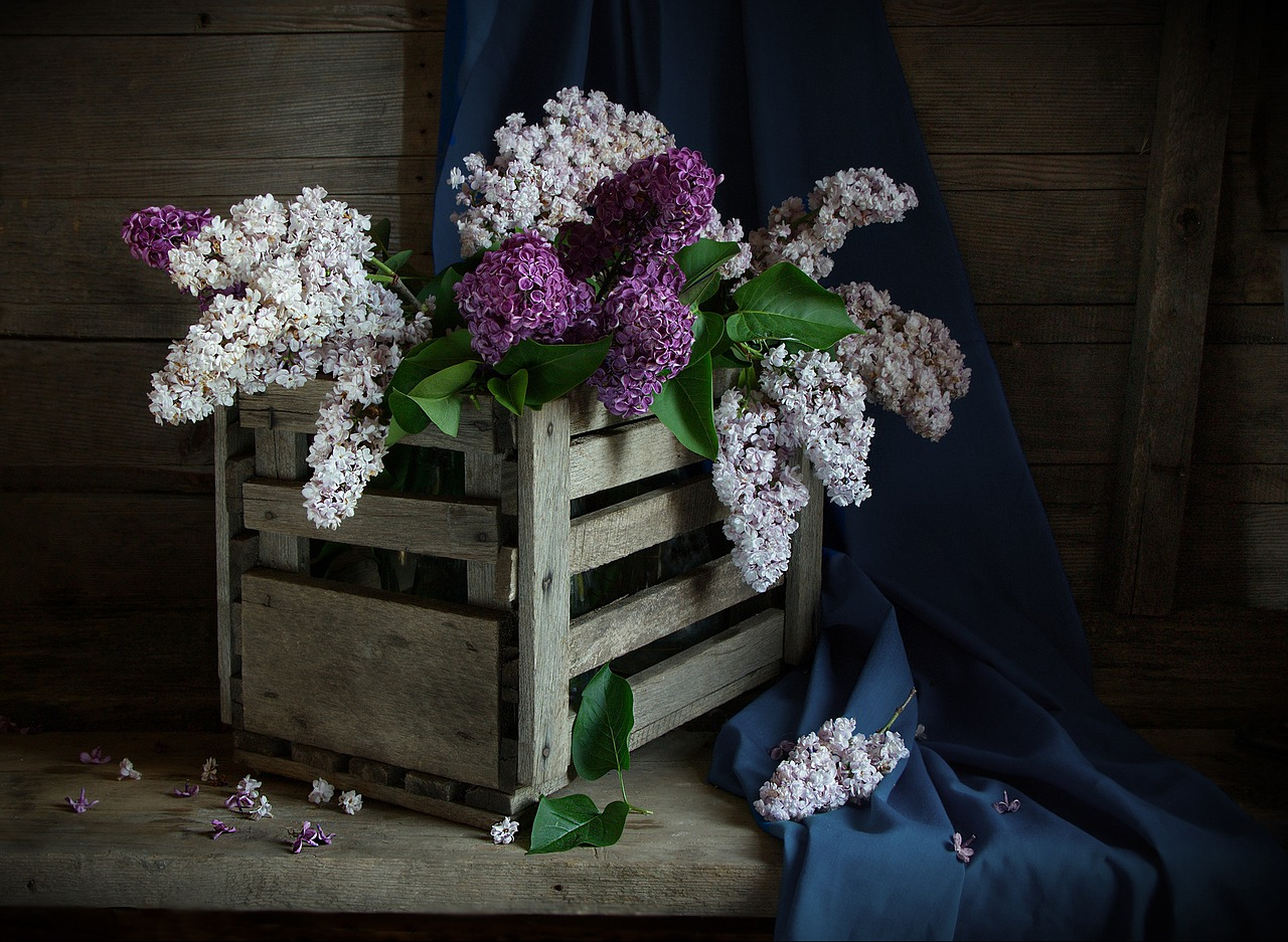 FREE bouquet Stock Photos from PikWizard