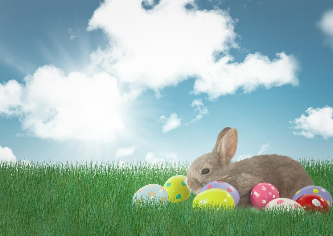Digital composite of Rabbit with Easter eggs with sky background