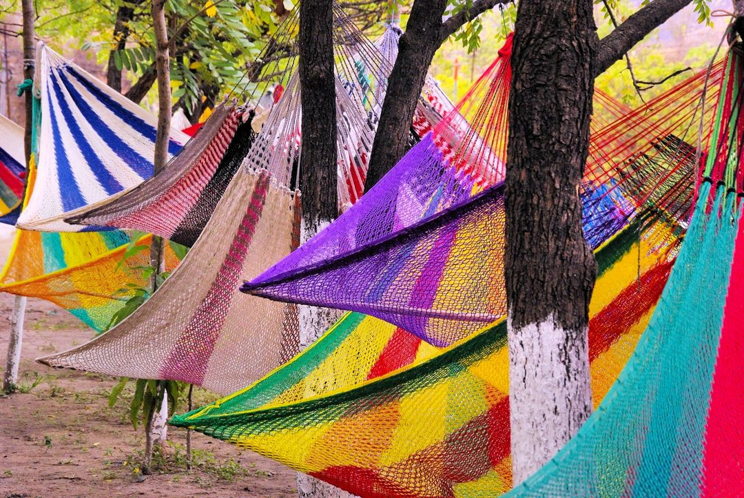 Colorful hammocks swinging from trees
