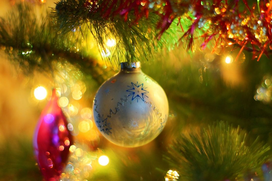 Close up Image of Decorations on a Christmas Tree