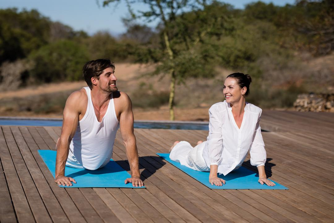 Couple performing yoga at safari vacation on a sunny day Free Stock Images from PikWizard