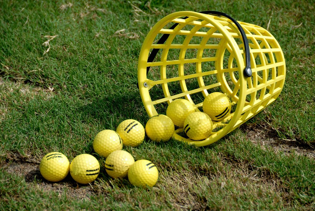 Active activity ball basket