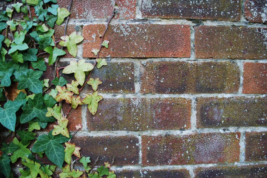 Ancient background brick brick texture