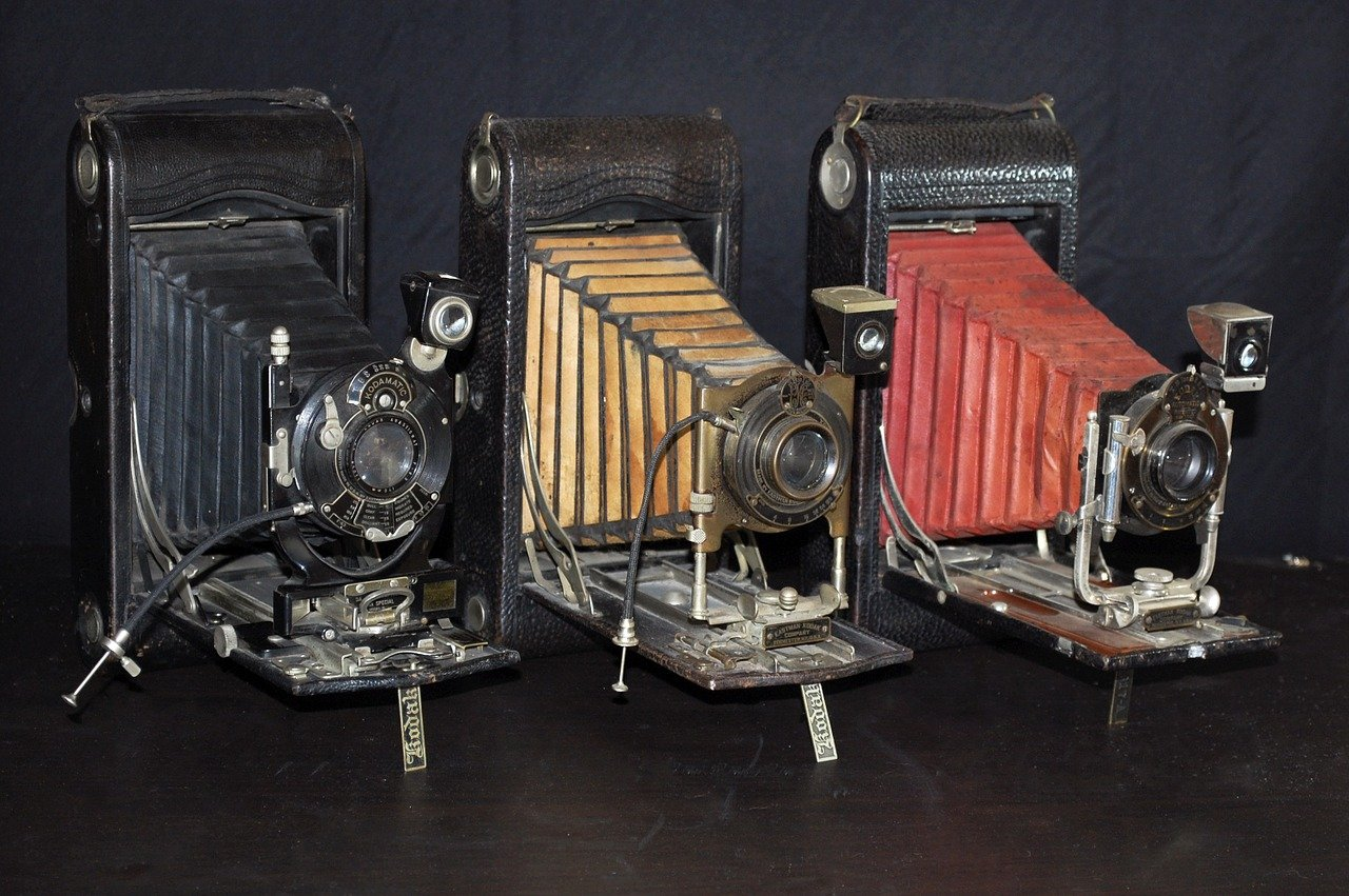 FREE accordion Stock Photos from PikWizard