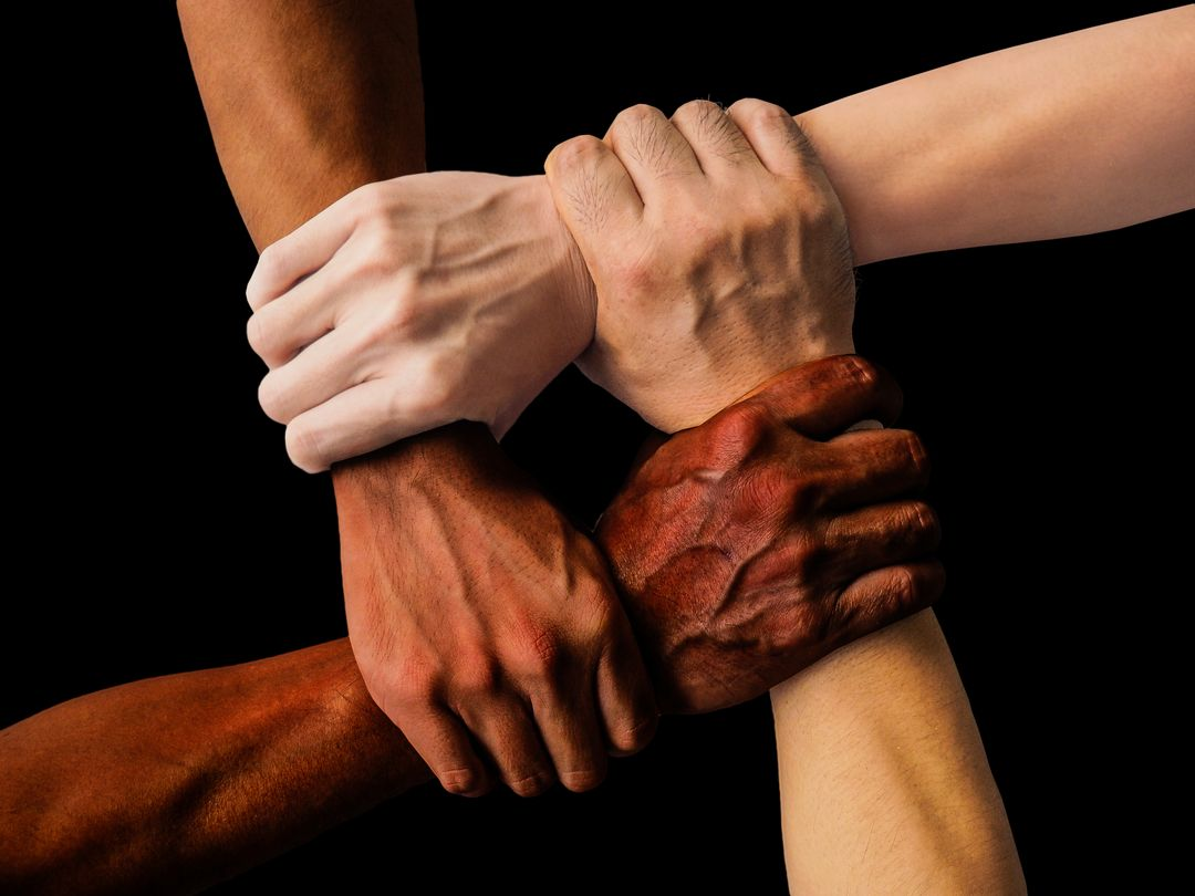 Image of Four People of Different Races Holding Each Others Wrist and Building a Square