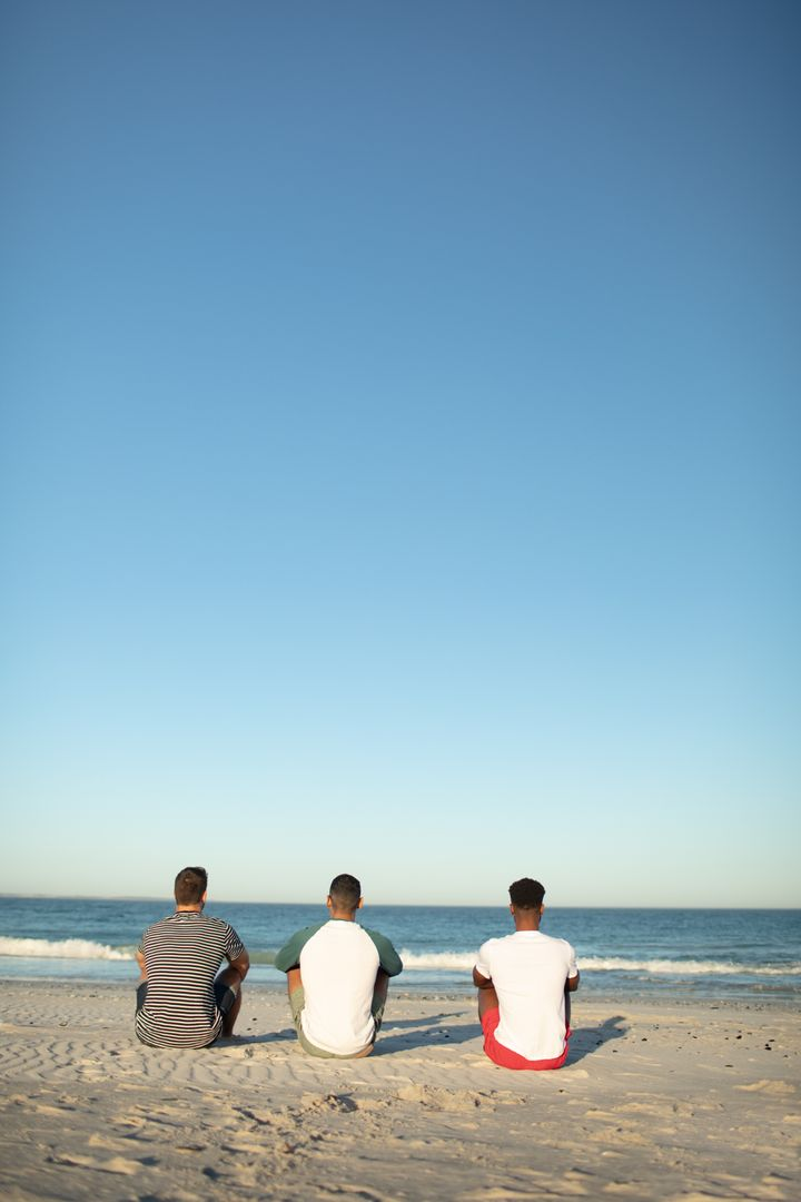 Rear view of male friends relaxing together on the beach Free Stock Images from PikWizard