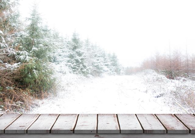 Wooden bridge with snow covered trees in background