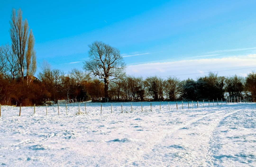 Farm Field Covered In Snow Free Stock Images from PikWizard