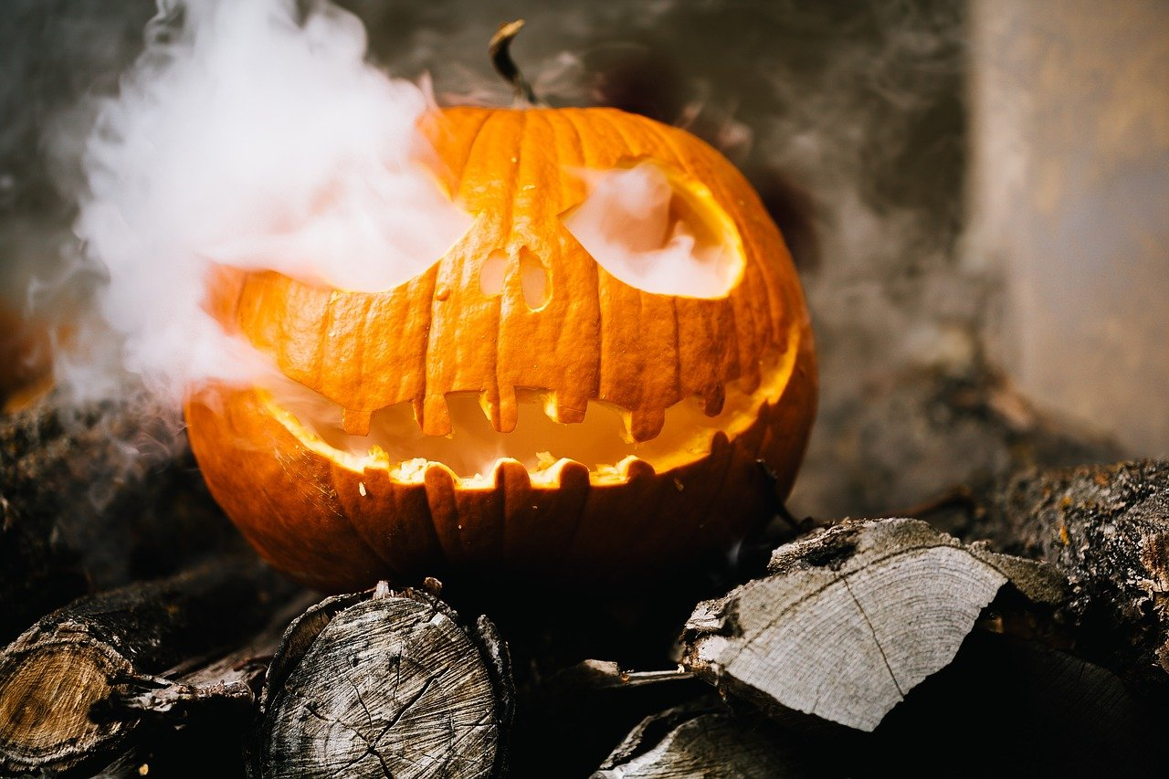 FREE pumpkin Stock Photos from PikWizard