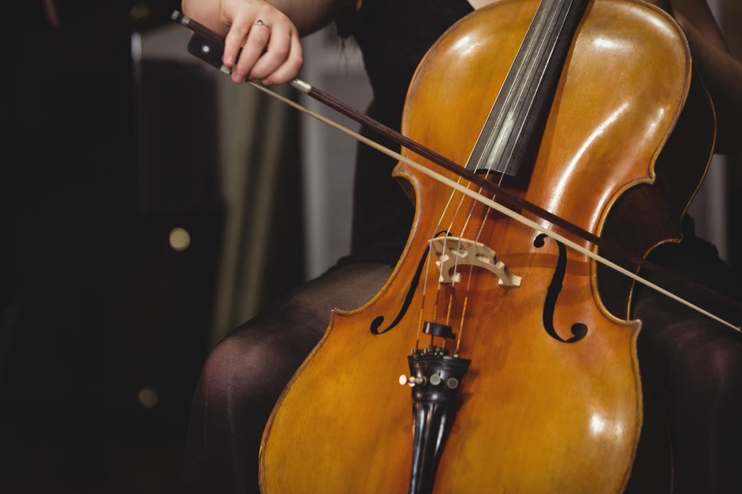 Mid-section of female student playing double bass in a studio Free Stock Images from PikWizard