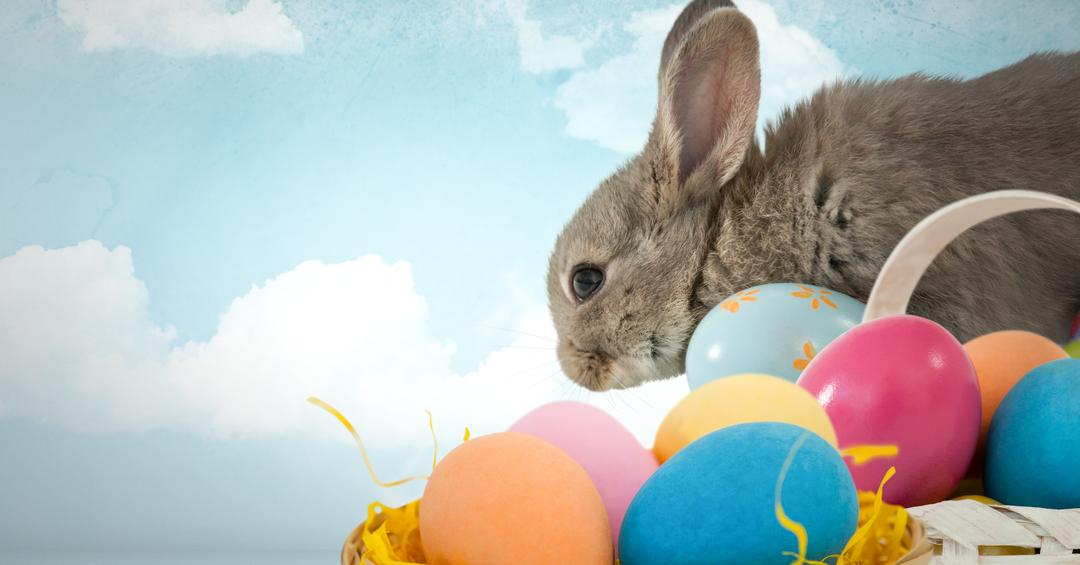 Digital composite of Easter rabbit with eggs in front of blue sky Free Stock Images from PikWizard