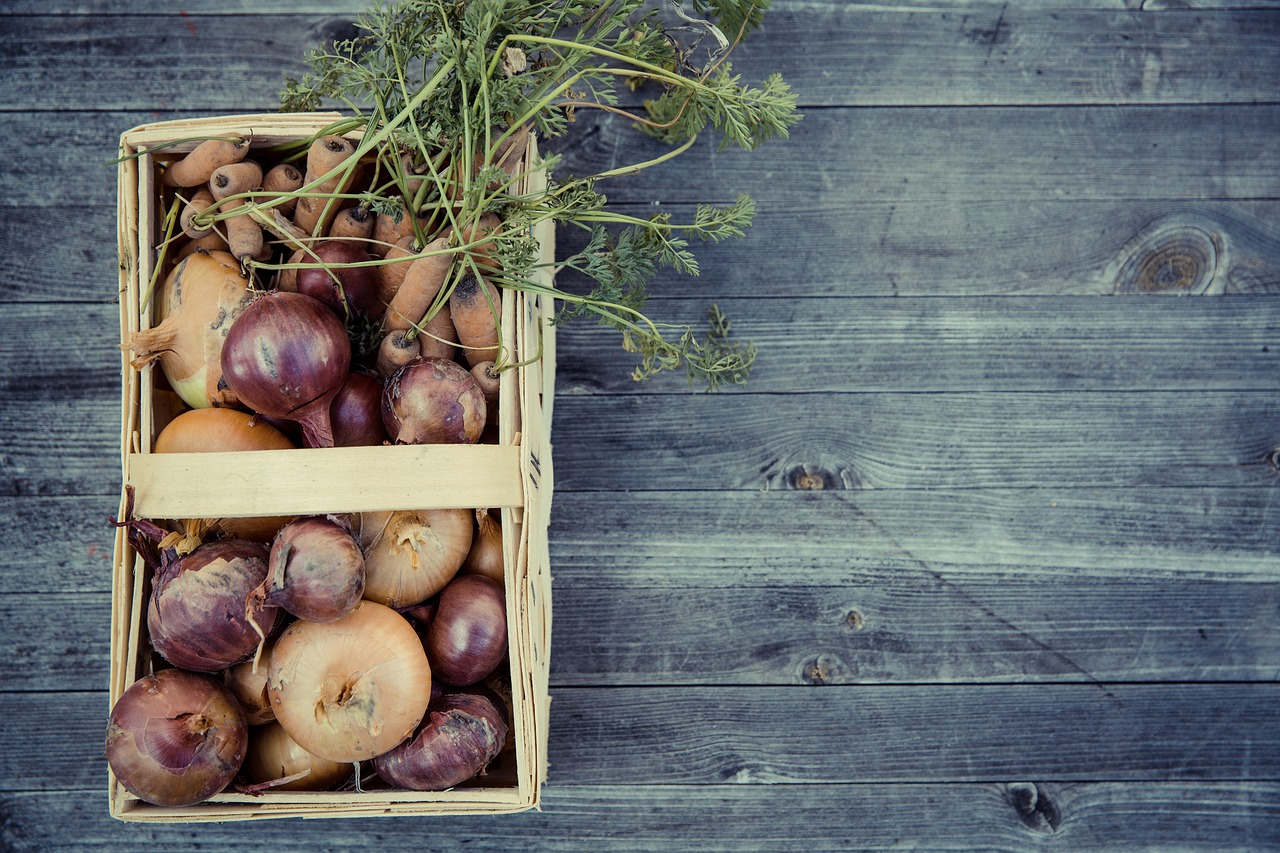 FREE onion Stock Photos from PikWizard