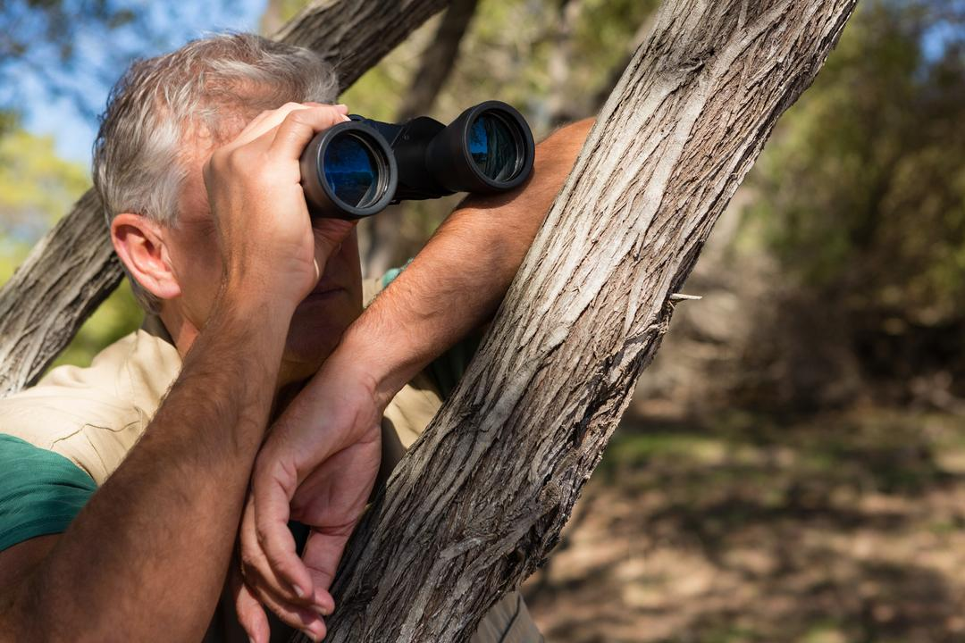 Mature man looking through binocular by tree at forest