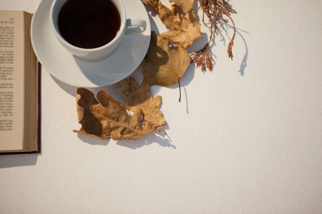 Overhead of autumn leaves, black tea and open book on white background Free Stock Images from PikWizard