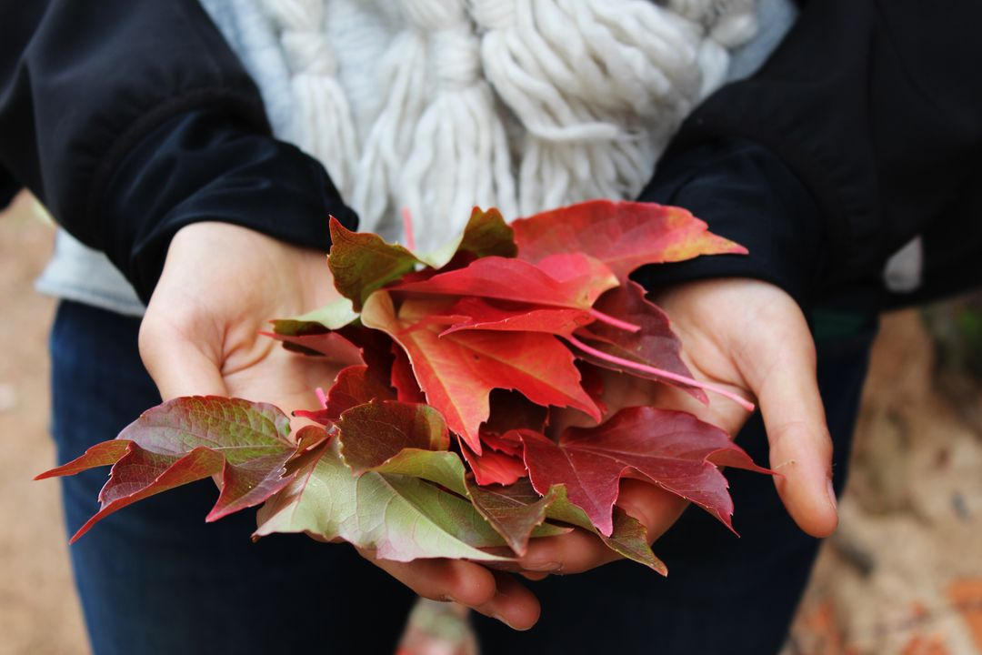Leaves Hands
