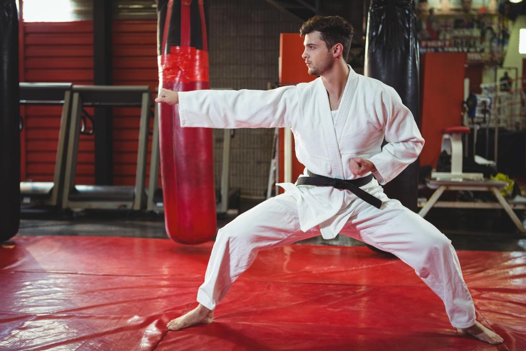 Karate player performing karate stance in fitness studio Free Stock Images from PikWizard