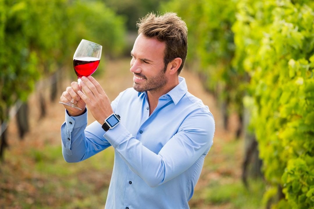 Smiling young man holding wineglass at vineyard