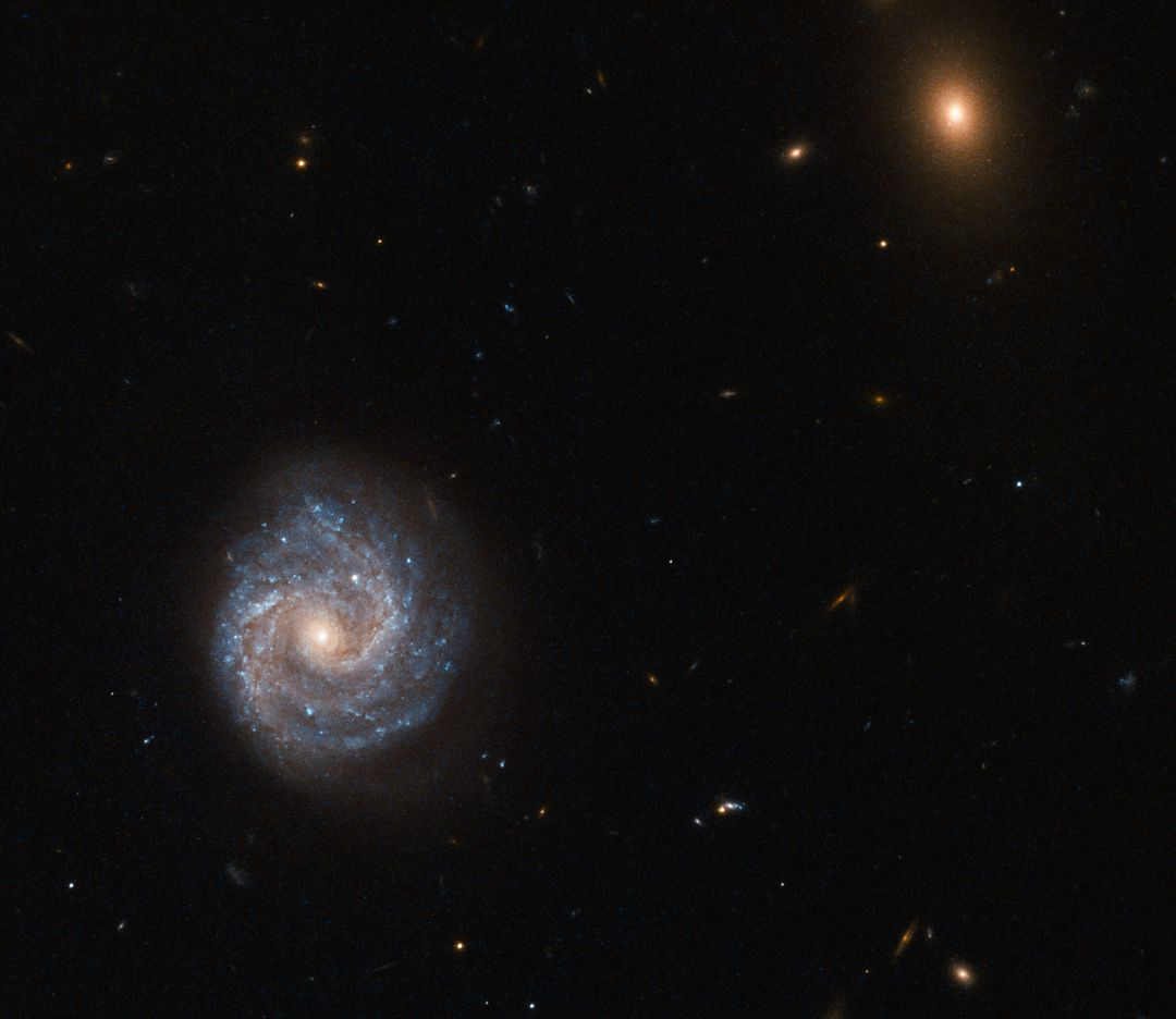 "Not all galaxies have the luxury of possessing a simple moniker or quirky nickname.   This impressive galaxy imaged by the NASA/ESA Hubble Space Telescope is one of the unlucky ones, and goes by a name that looks more like a password for a computer:  2XMM J143450.5+033843.  Such a name may seem like a random jumble of numbers and letters, but like all galactic epithets it has a distinct meaning. This galaxy, for example, was detected and observed as part of the second X-ray sky survey performed by ESA's XMM-Newton Observatory. Its celestial coordinates form the rest of the bulky name, following the ""J"": a right ascension value of 14h (hours) 34m (minutes) 50.5s (seconds). This can be likened to terrestrial longitude. It also has a declination of +03d (degrees) 38m (minutes) 43s (seconds). Declination can be likened to terrestrial latitude. The other fuzzy object in the frame was named in the same way — it is a bright galaxy named 2XMM J143448.3+033749.  2XMM J143450.5+033843 lies nearly 400 million light-years away from Earth. It is a Seyfert galaxy that is dominated by something known as an Active Galactic Nucleus — its core is thought to contain a supermassive black hole that is emitting huge amounts of radiation, pouring energetic X-rays out into the Universe.  Photo credit: ESA/Hubble &amp; NASA  <b><a href=""http://www.nasa.gov/audience/formedia/features/MP_Photo_Guidelines.html"" rel=""nofollow"">NASA image use policy.</a></b>  <b><a href=""http://www.nasa.gov/centers/goddard/home/index.html"" rel=""nofollow"">NASA Goddard Space Flight Center</a></b> enables NASA's mission through four scientific endeavors: Earth Science, Heliophysics, Solar System Exploration, and Astrophysics. Goddard plays a leading role in NASA's accomplishments by contributing compelling scientific knowledge to advance the Agency's mission.  <b>Follow us on <a href=""http://twitter.com/NASAGoddardPix"" rel=""nofollow"">Twitter</a></b>  <b>Like us on <a href=""http://www.facebook.com/pages/Greenbelt-MD/NASA-Goddard/395013845897?ref=tsd"" rel=""nofollow"">Facebook</a></b>  <b>Find us on <a href=""http://instagrid.me/nasagoddard/?vm=grid"" rel=""nofollow"">Instagram</a></b>"